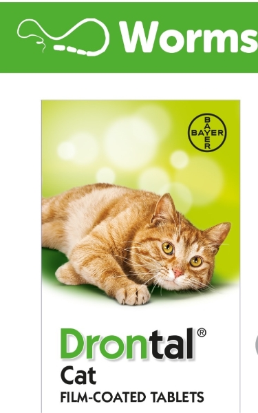 Drontal Plus Cat Worming Tablet