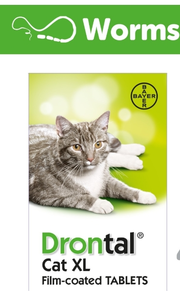Drontal Xl Cat Worming Tablet