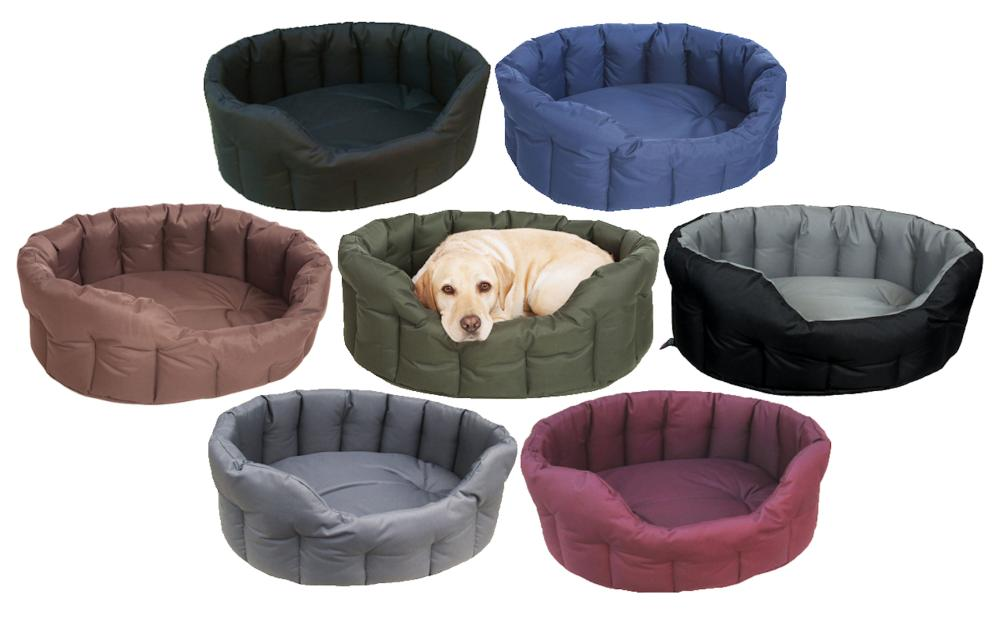 wet bed for dogs
